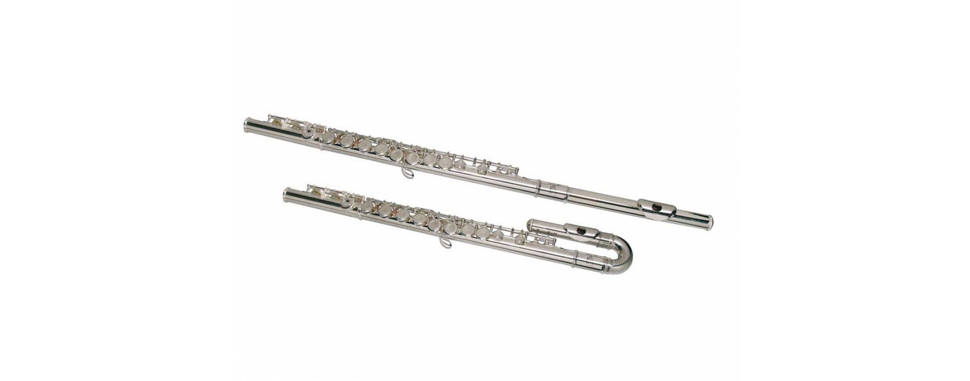 Flétny