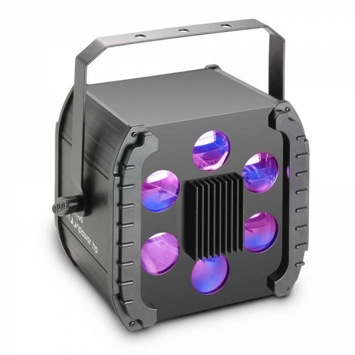 Cameo MOONFLOWER HP