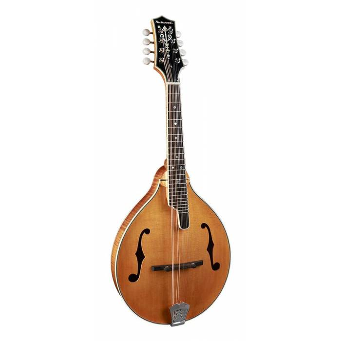 Richwood All Solid Master RMA-110-VS